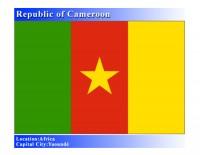 Cameroon Women's  Professional Network (CWPN)